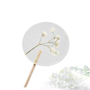 Lolly met bloemen - gipskruid